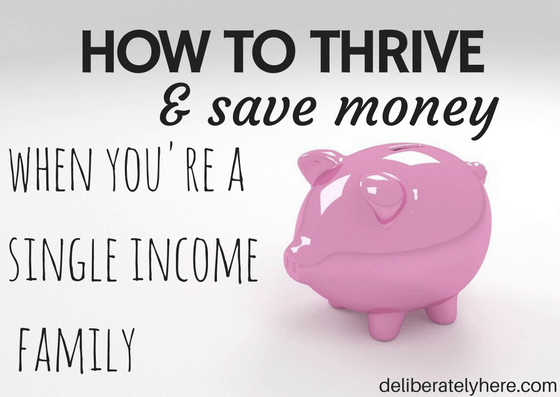 11 Ways to Thrive as a Single Income Family