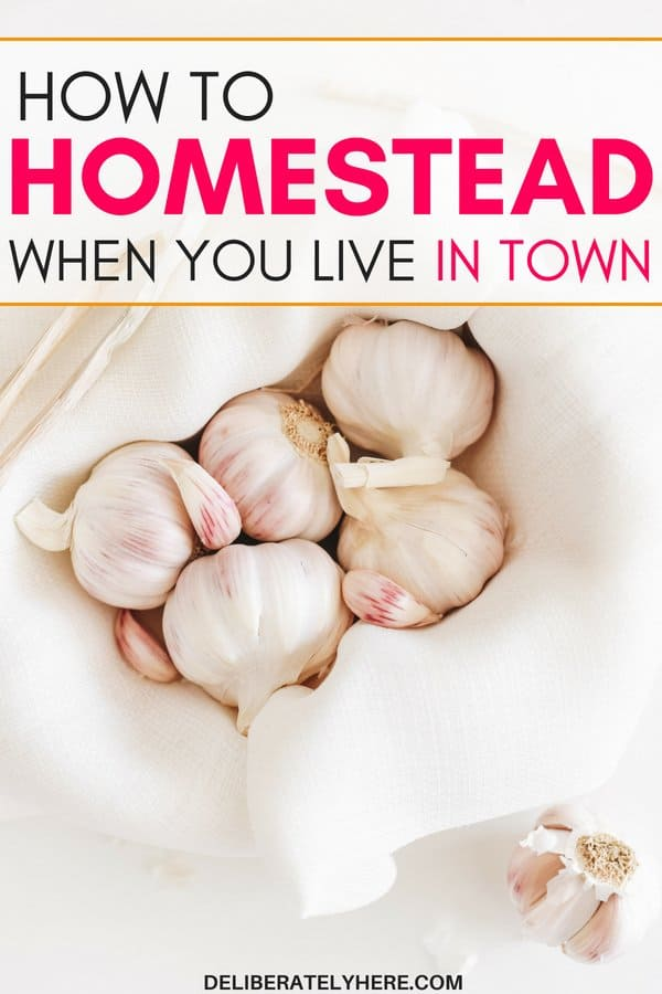 10 easy ways to homestead when you live in town. Live self-sufficiently in town. Grow your own food and live off of your land. Live a homesteader lifestyle in town. This is SO GREAT!! I always wanted to homestead but I've been stuck in town...That tips are GENIUS! I'm so glad I can start living a self-sufficient lifestyle while living in town!
