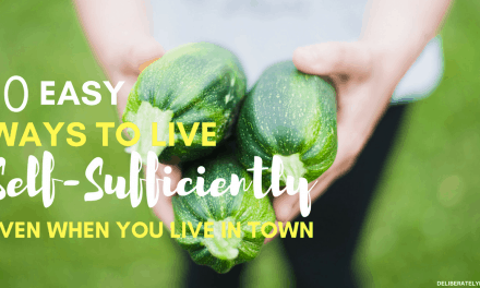 10 Easy Ways to Live More Self-Sufficiently