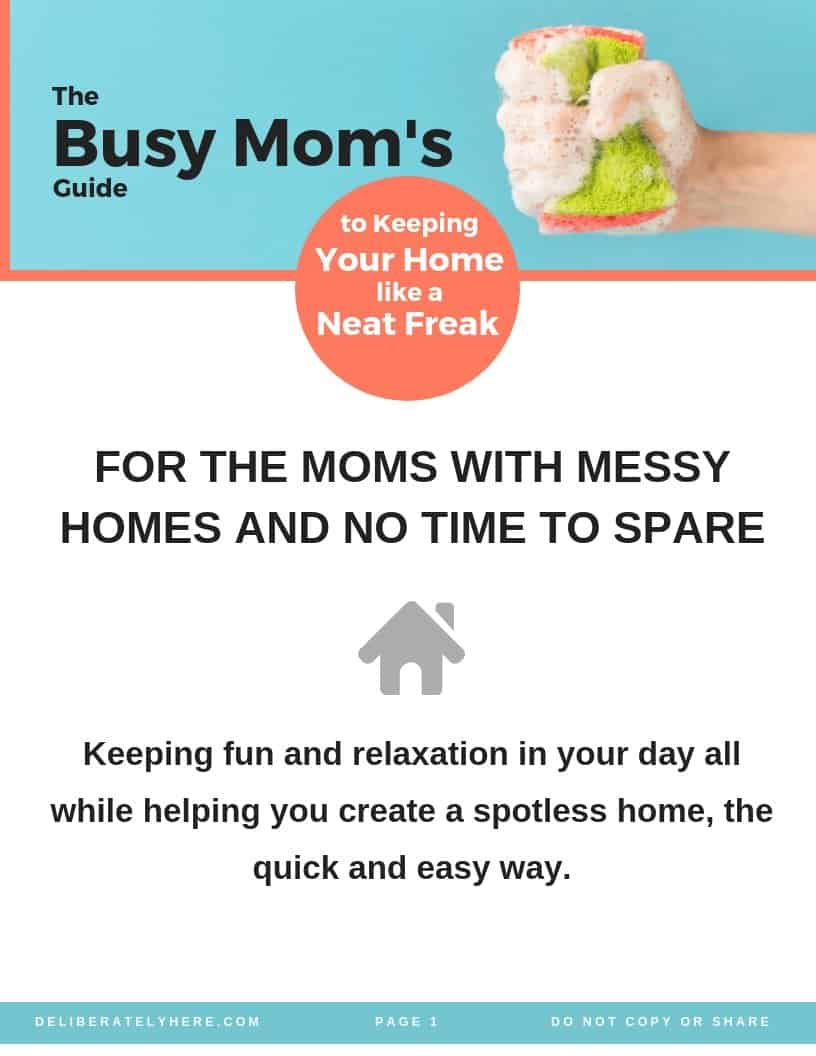 Busy Mom's guide to keeping your home like a neat freak