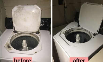 10 Easy Tips to Clean Your Smelly Top Load Washing Machine – Naturally