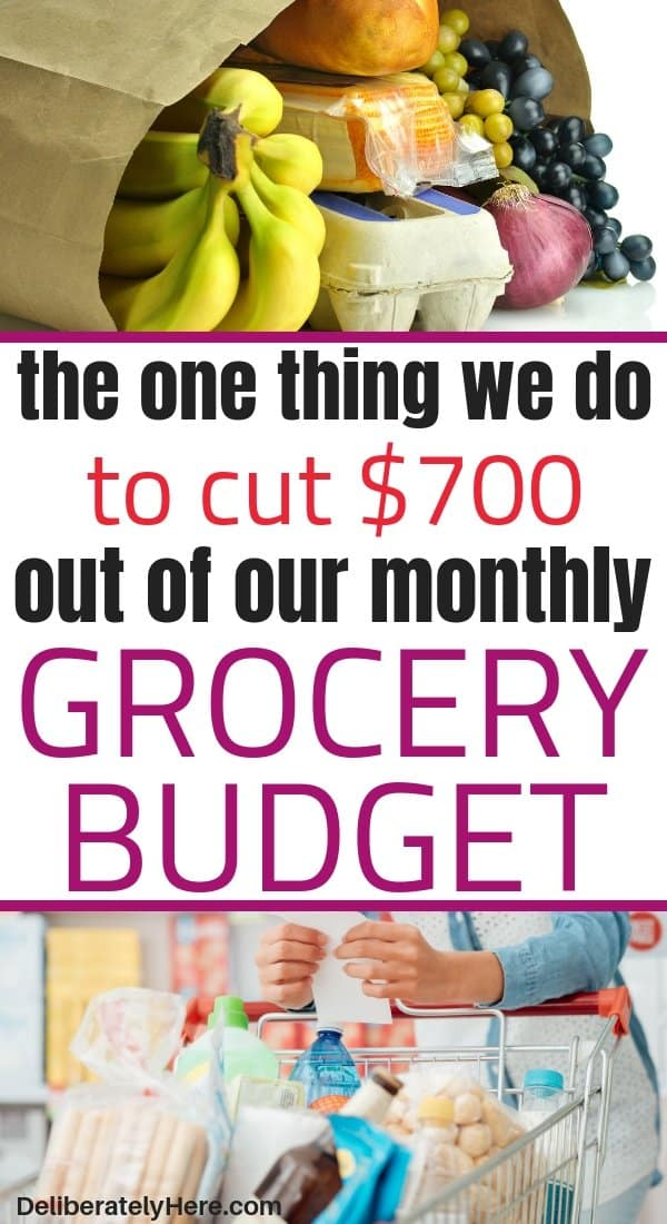 The one thing we do to save money on groceries every month (that isn't couponing). How to save money on groceries every month without fail. How to save money on groceries every month. The one trick we used to lower our grocery bill by $700 a month. How to save money on groceries without coupons. Save money on groceries with frugal living. How to eat healthy on a budget. How to feed a family on a budget.