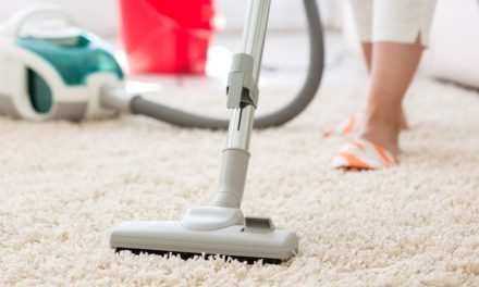 The Best Inexpensive Vacuum Cleaners of 2020 That Every Neat Freak Will Love